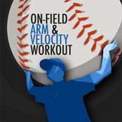 Arm and Velocity Logo